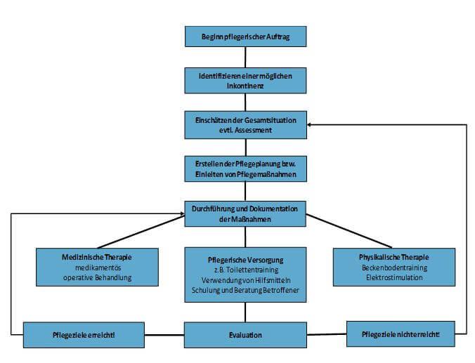Expertenstandard Förderung Harnkontinenz Prozessstruktur